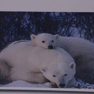 Diamond painting isbjørnemor med barn