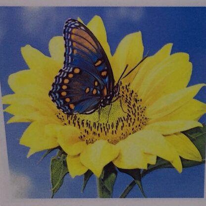 Diamond painting blå sommerfugl i solsikke
