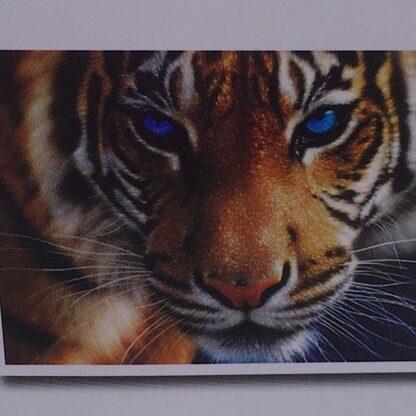 Diamont painting smuk tiger med blå øjne